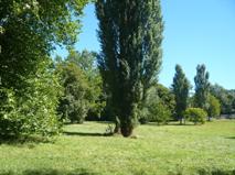 La Mémoire du Jardin