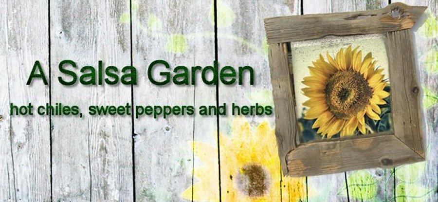 A Salsa Garden