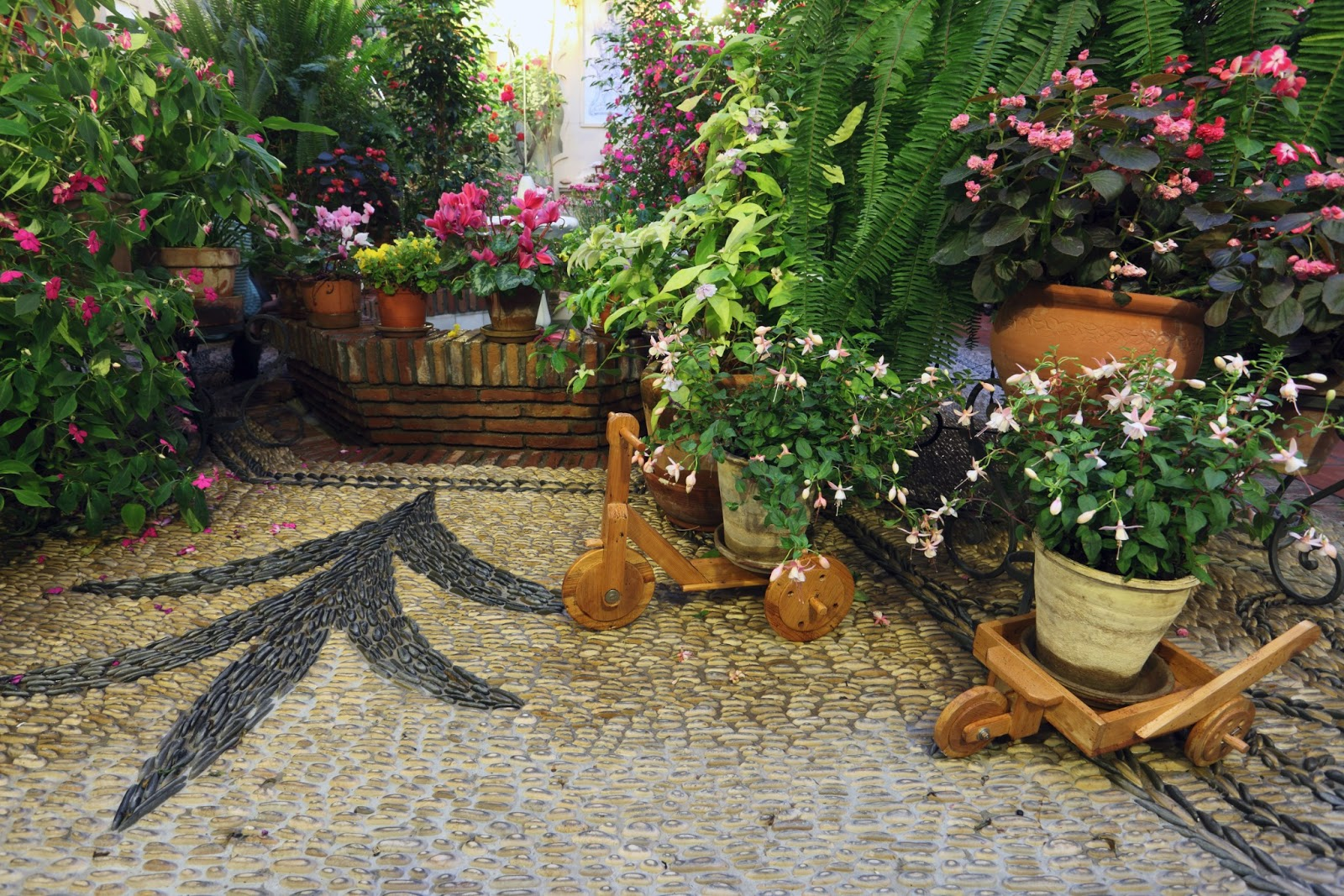 Banco de im genes julio 2013 for Small patio plant ideas
