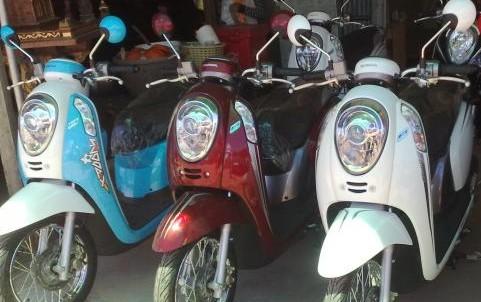 Kingmotobike 2013 .