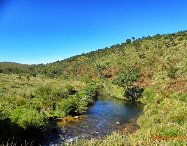 Rios en el Parque Nacional de Horton