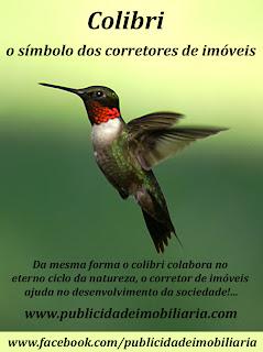 colibri Porque o Colibri é o símbolo dos Corretores de imóveis?