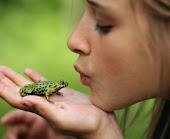 Todas las ranas no son un principe azul que te hara feliz para toda tu vida