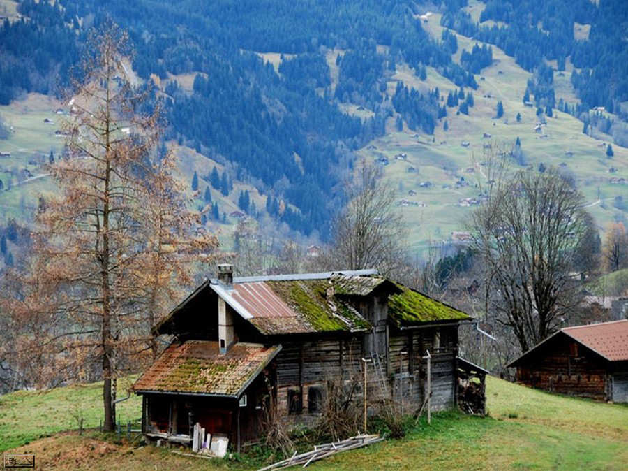 Beauty Switzerland