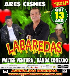 ARES CISNES - BANDA LABAREDAS