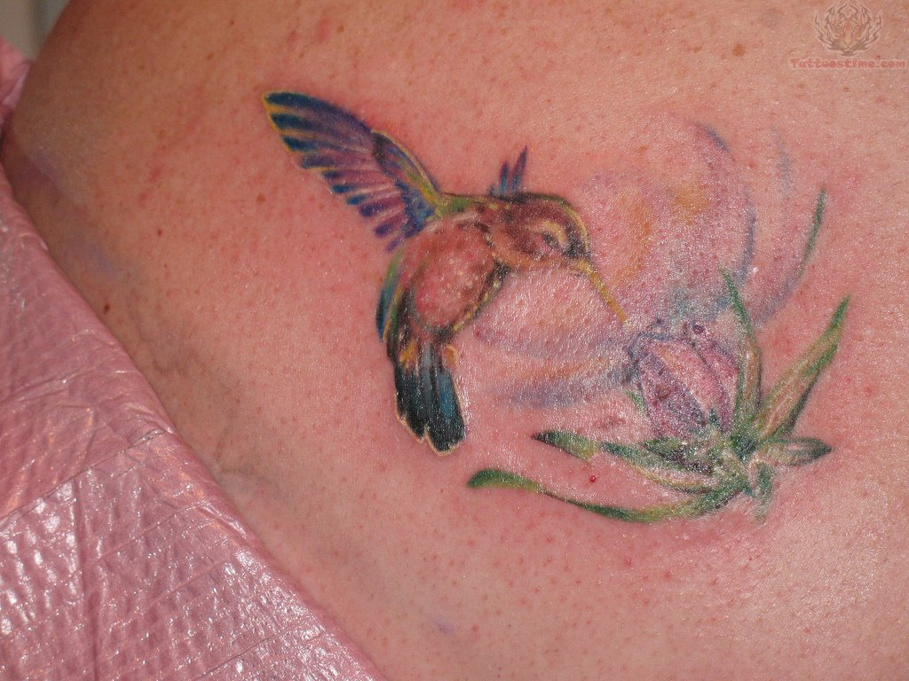 Humming Bird Tattoos: Hummingbird Tattoos With Flower