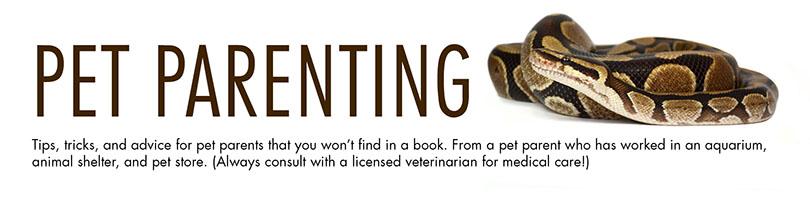 Pet Parenting