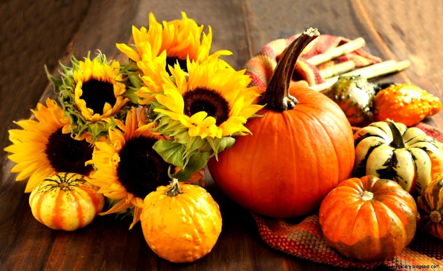 Autumn Pumpkin Wallpaper   WallpaperSafari