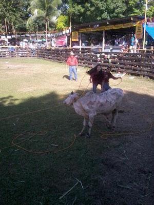 rodeo photo
