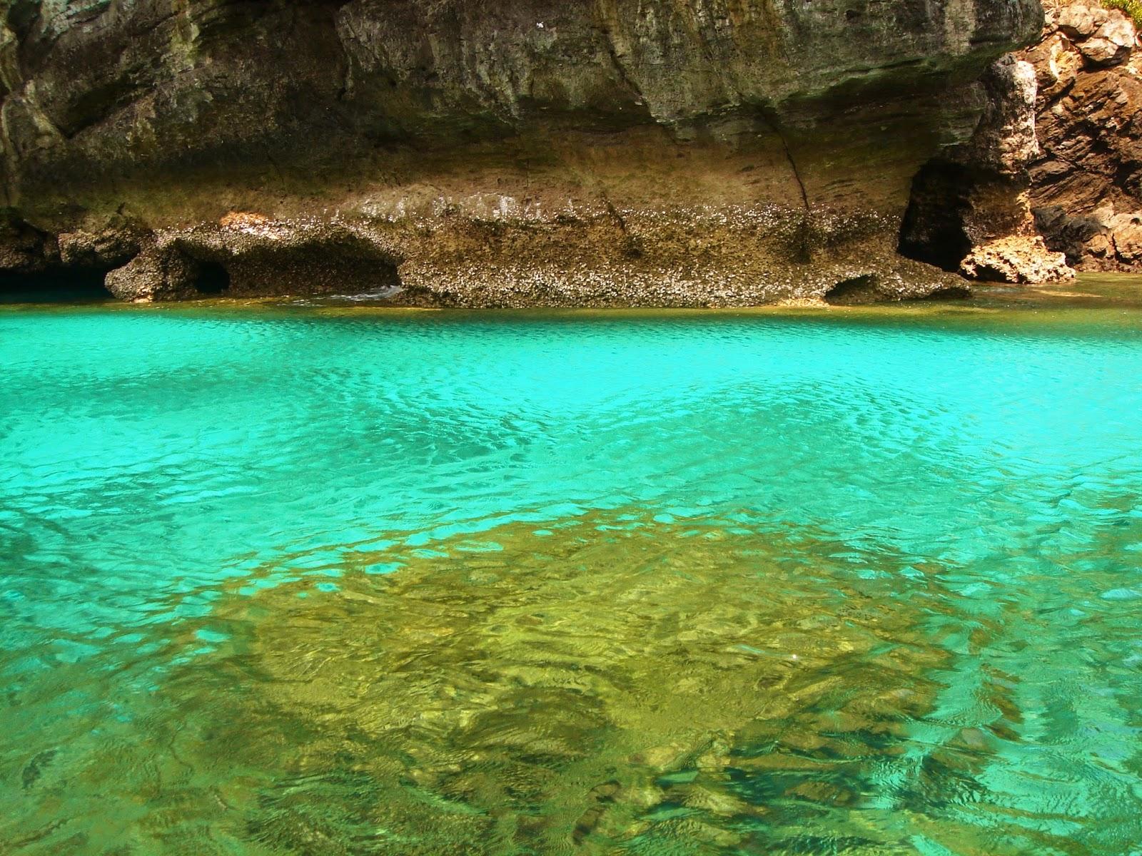 phi-phi-island-thailand-beach-asia-