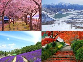 Paket Tour Ke Jepang Bersama Cheria Holiday