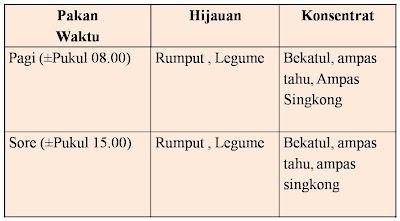 tabel pemberian pakan pada budidaya ternak kambing natural nusantara nasa