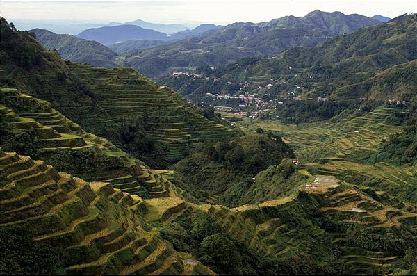 the literature of central luzon Central luzon is a combination of towering mountains, extinct and active volcanoes, lush, verdant farmlands, and natural sea harbors it is one of the leading growth.