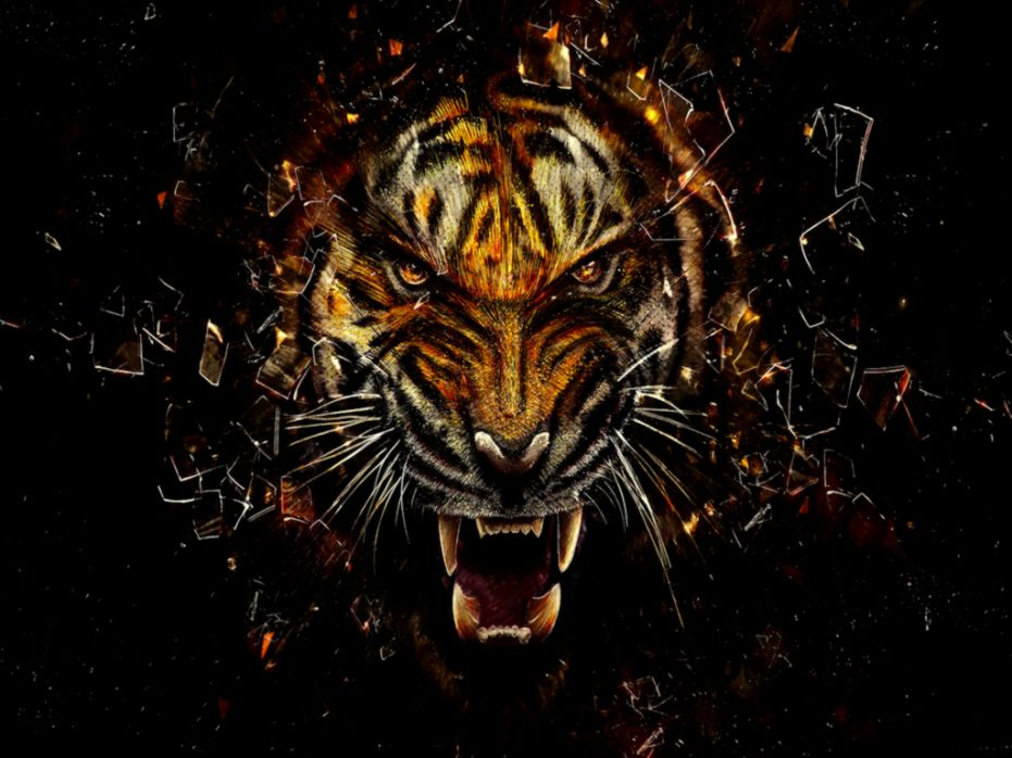 View Original Size Face Tiger Art Cool Wallpapers Hd Background 14572 Wallpaper