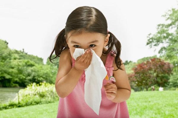 Cách phòng và chữa bệnh viêm mũi dị ứng ở trẻ em