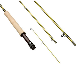 The New Sage Pulse Fly Rod