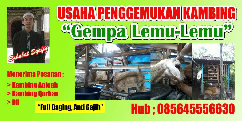Iklan ; Kambing Full Daging