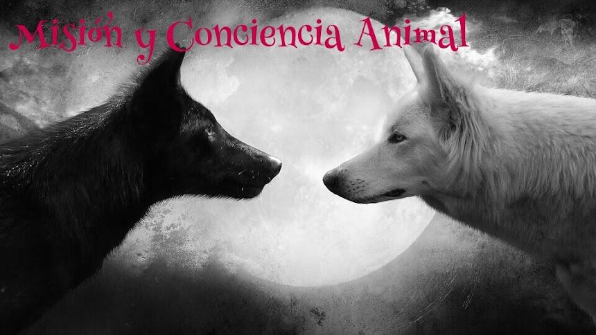 Misión y Conciencia Animal
