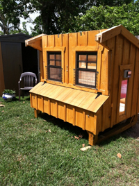 Custom Chicken Coop Construction