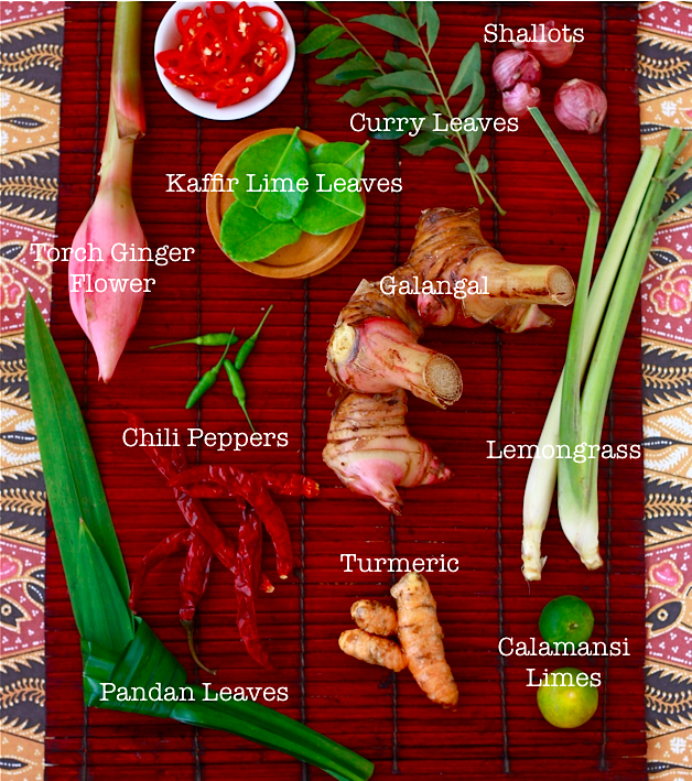 list of Southeast Asian cooking Herbs and Spices