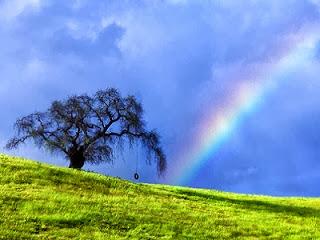 Ilustrasi foto dari akhwatmuslimah.com