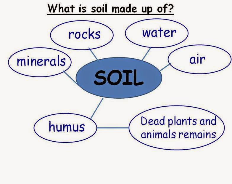 Mrs eva 39 s 4th and 5th grade class mayo 2014 for Soil facts for 4th grade