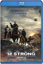 12 Strong (2018) HD 1080p Dual Latino / Ingles