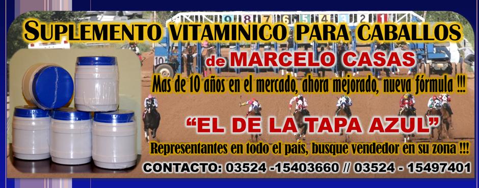 SUPLEMENTO MARCELO CASAS