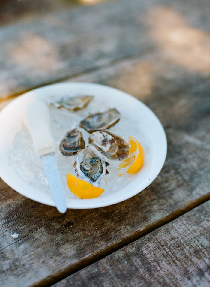 Oysters with Chandara Creative | Tomales Bay | Photography: Silvana Di Franco