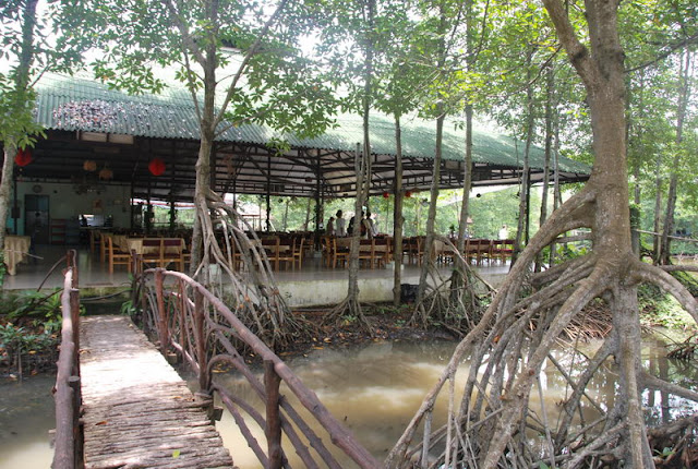 Forêt de mangroves de Vam Sat (Can Gio) - Le poumon vert de Saigon