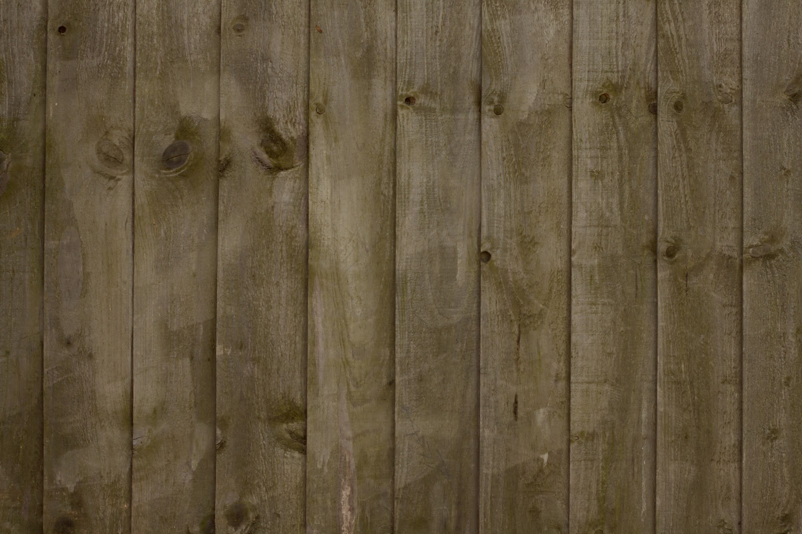 Wood Fence Texture : ... Textures: Wood dry cracked fence plank tree bark texture ver 20