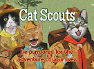 Proud to be a Cat Scout