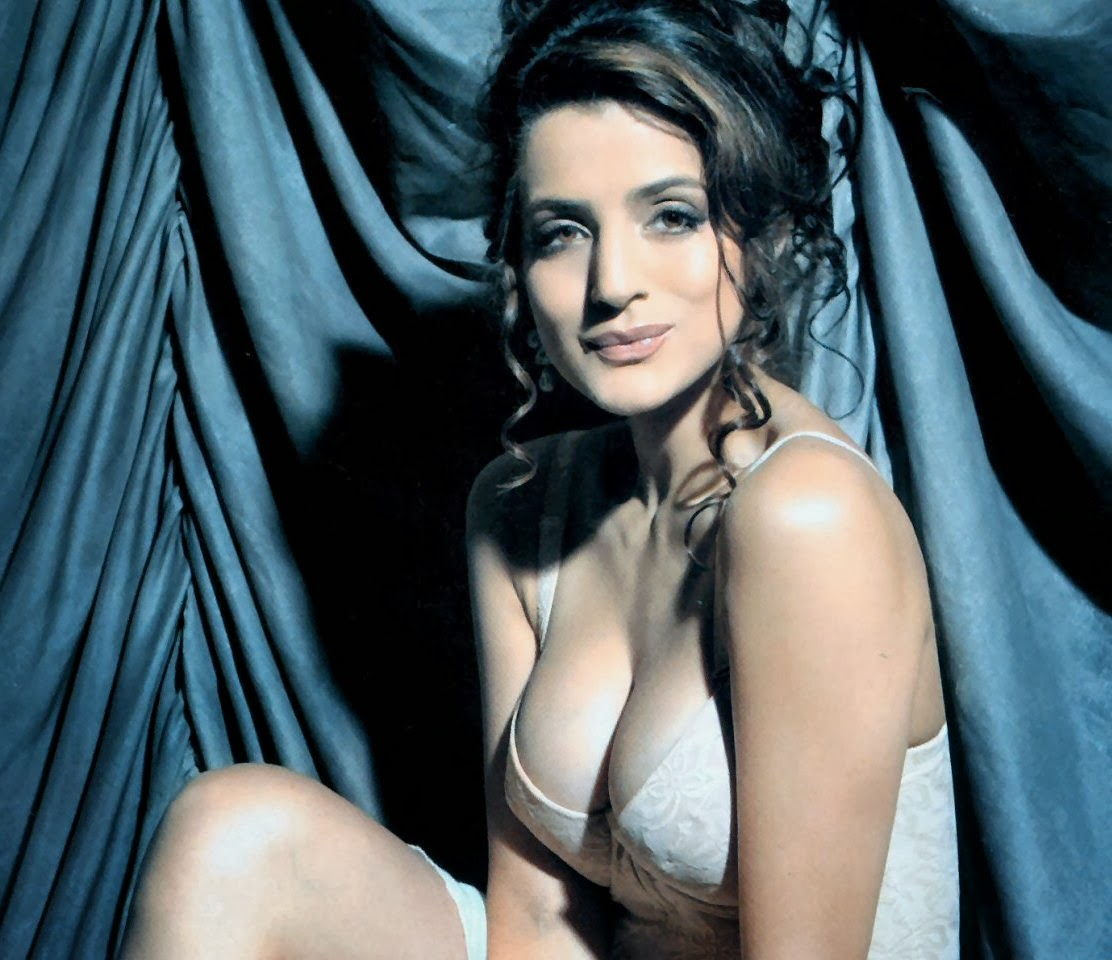 Amisha Patel Actress