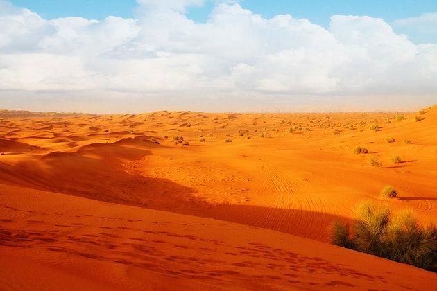 Desert Excursions