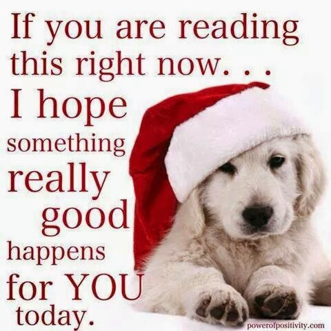 """If you are reading this right now... I hope something really good happens for you today."" Picture of a labrador puppy wearing a santa hat. powerofpositivity.com"