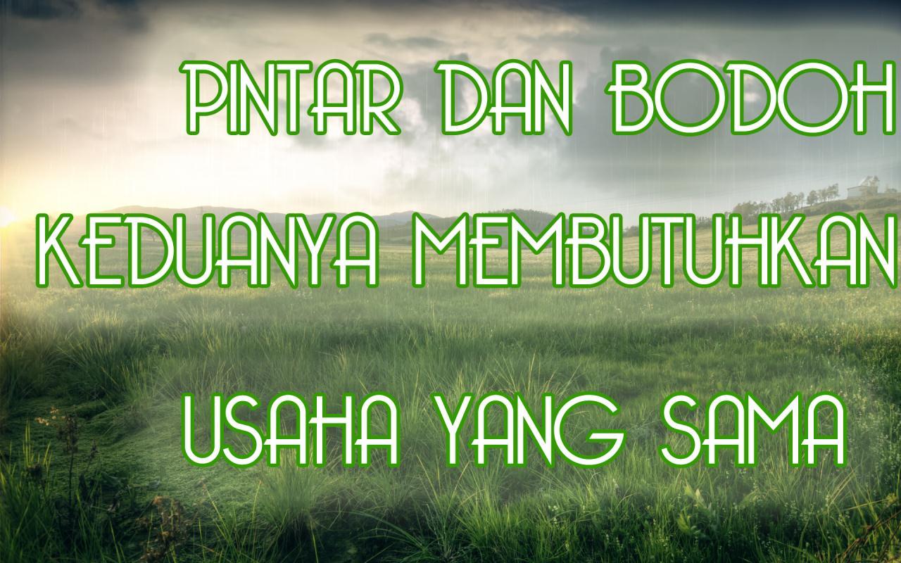 http://3.bp.blogspot.com/-TcSA5tQKWi0/UF8u9iTj20I/AAAAAAAAAmI/tzaVeftTbqo/s1600/kata+mutiara-kata+kata+bijak-kata+kata+indah-PINTAR+BODOH+USAHA+SAMA.jpg