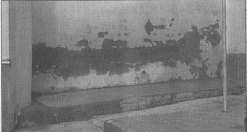 Mancha producida por filtración de un jardín trasero al muro, aunque aparentemente parece un remonte capilar.