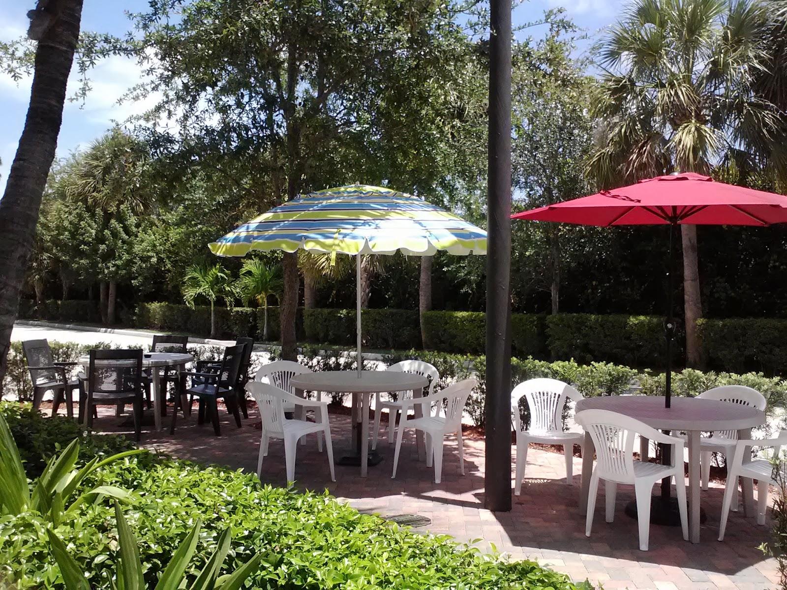 Jane 39 S Bits Lola 39 S Seafood Eatery Fresh Seafood Stellar Concept Palm Beach Gardens
