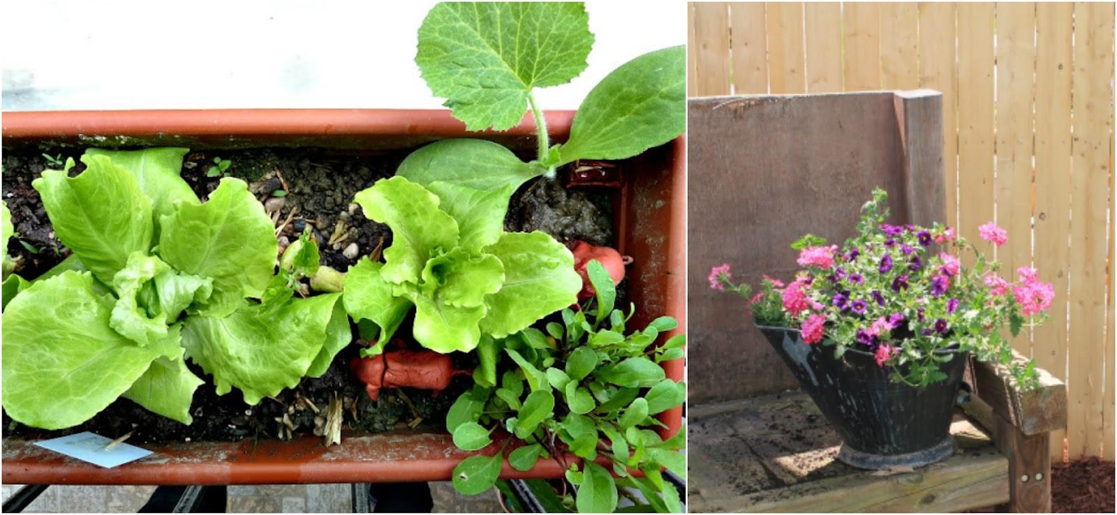 DIY Vases & Planters on Diane's Vintage Zest!  #diy #home #garden