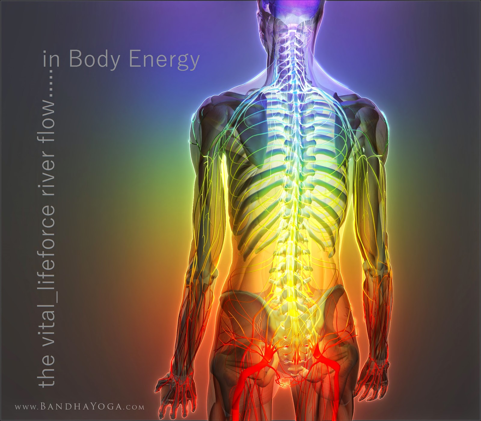 what is the bodys chi energy How to feel qi (energy) without waiting years the body the chi is going to so my personal belief is that how well we feel chi has to do with current energy.