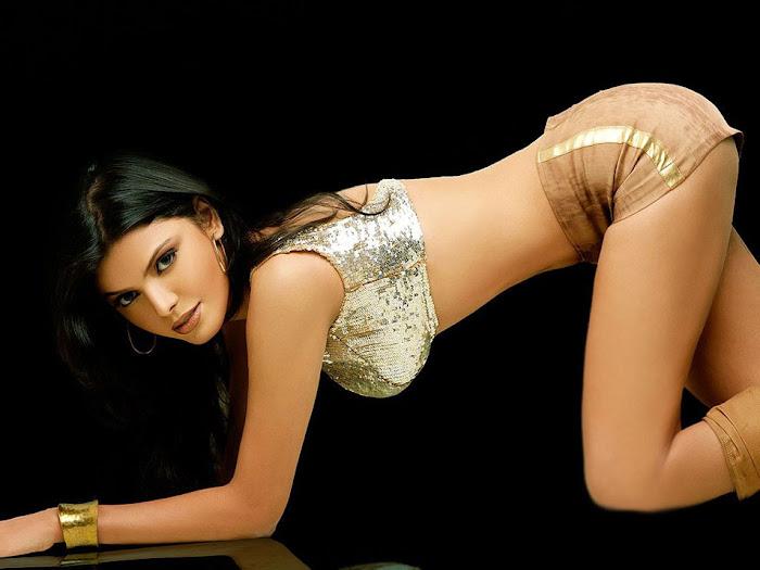 sherlyn chopra bikini glamour  images