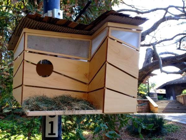 Designer Birdhouses in Davis
