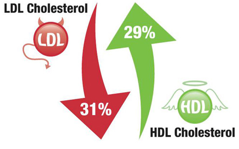 The Michelle Factor: Tips to Lower Your Cholesterol
