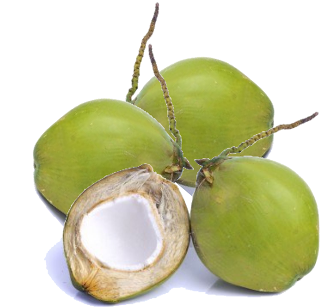 Photos of Young Green Coconut
