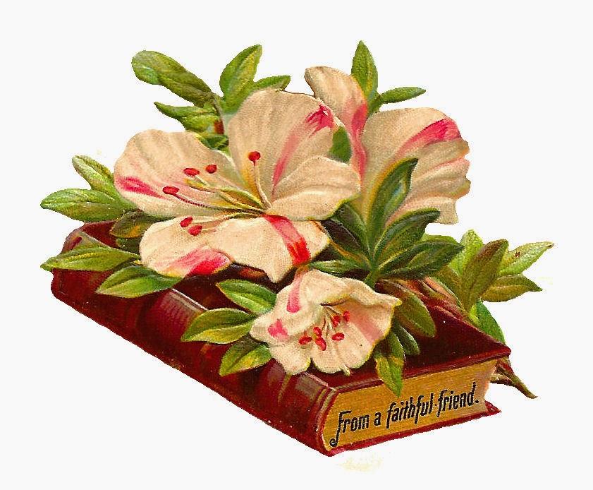 http://3.bp.blogspot.com/-TeIUBSSXN-E/VSLyPMqnljI/AAAAAAAAWIM/tFxVVa5BB0c/s1600/bk_flwr_faithful_friend_scrap.jpg
