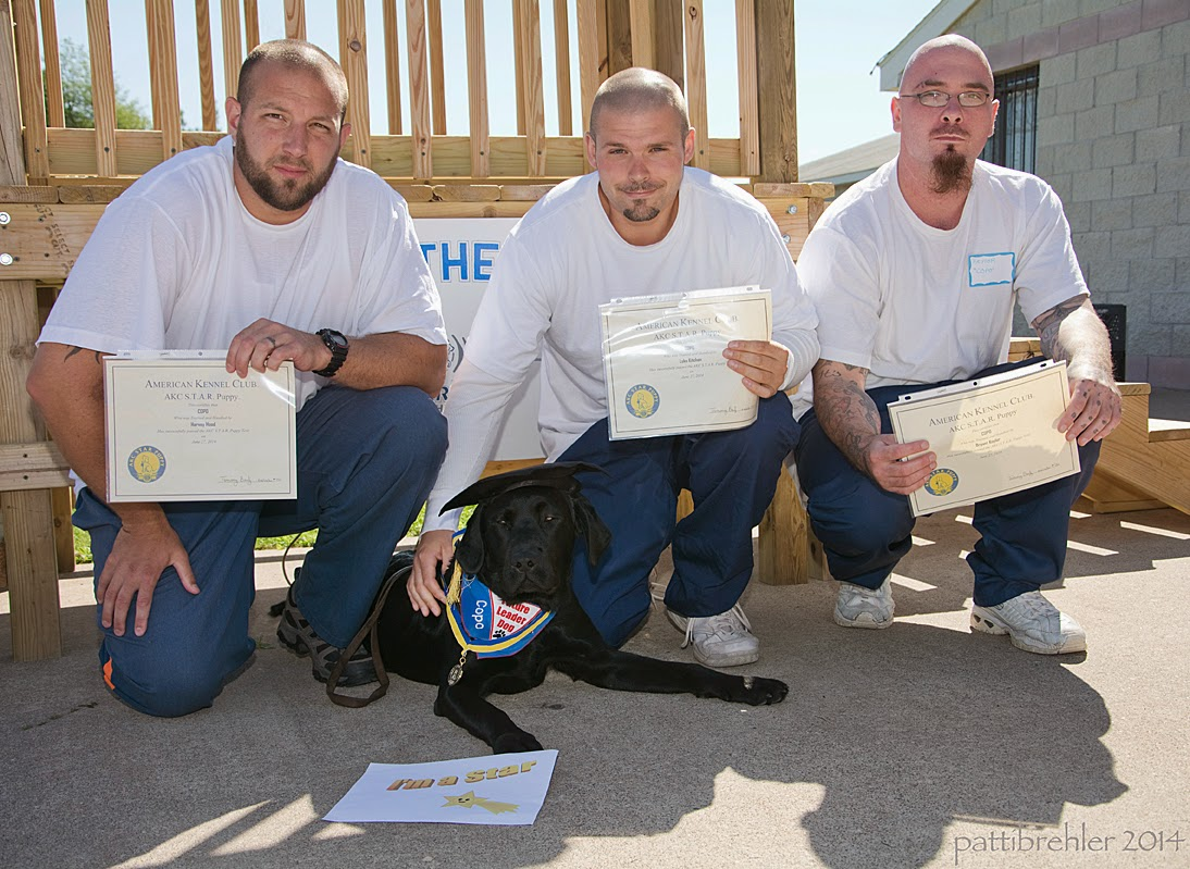 "Three men dressed in blue prison  uniforms and white t-shirts squat in front of a wooden staircase, holding certificates up. All are looking at the camera. There is a young black lab lying down between the man on the left and the man in the middle. The middle man has his right hand on the lab's back. The lab is wearing a black graduation hat, the blue Future Leader Dog bandana and a medal around his neck, he is looking at the camera. There is a sign lying on the cement in front of the dog that reads, ""I'm a star!"""