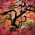 pics of Portland Japanese gardens