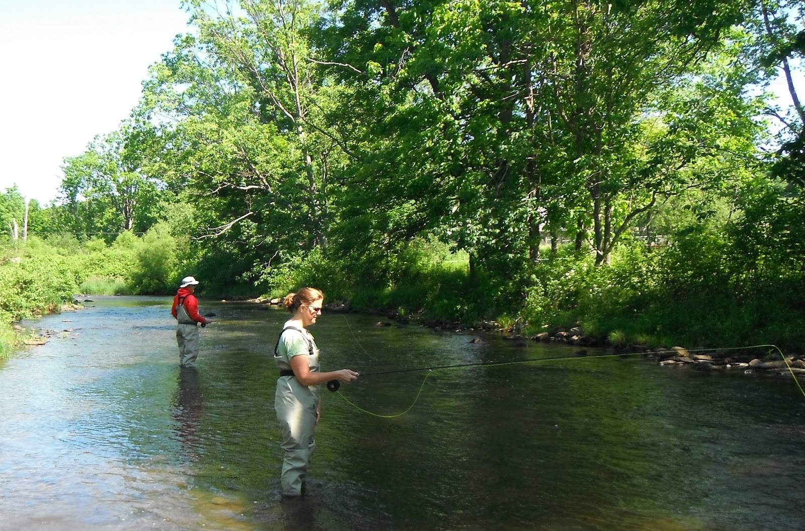 Western maryland fly fishing teaching the guide for Md trout fishing