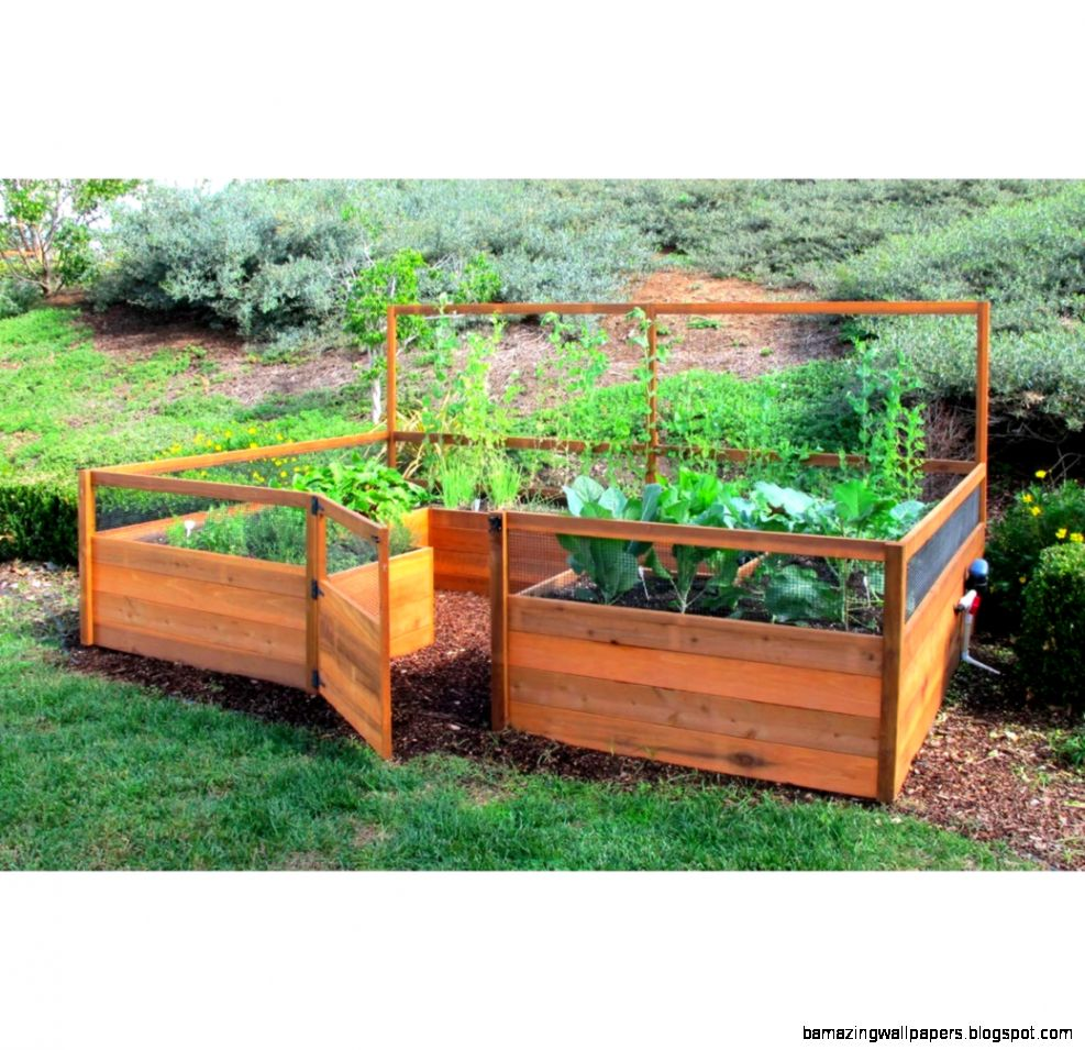 Cedar Complete Raised Garden Bed Kit   8 x 12 x 20