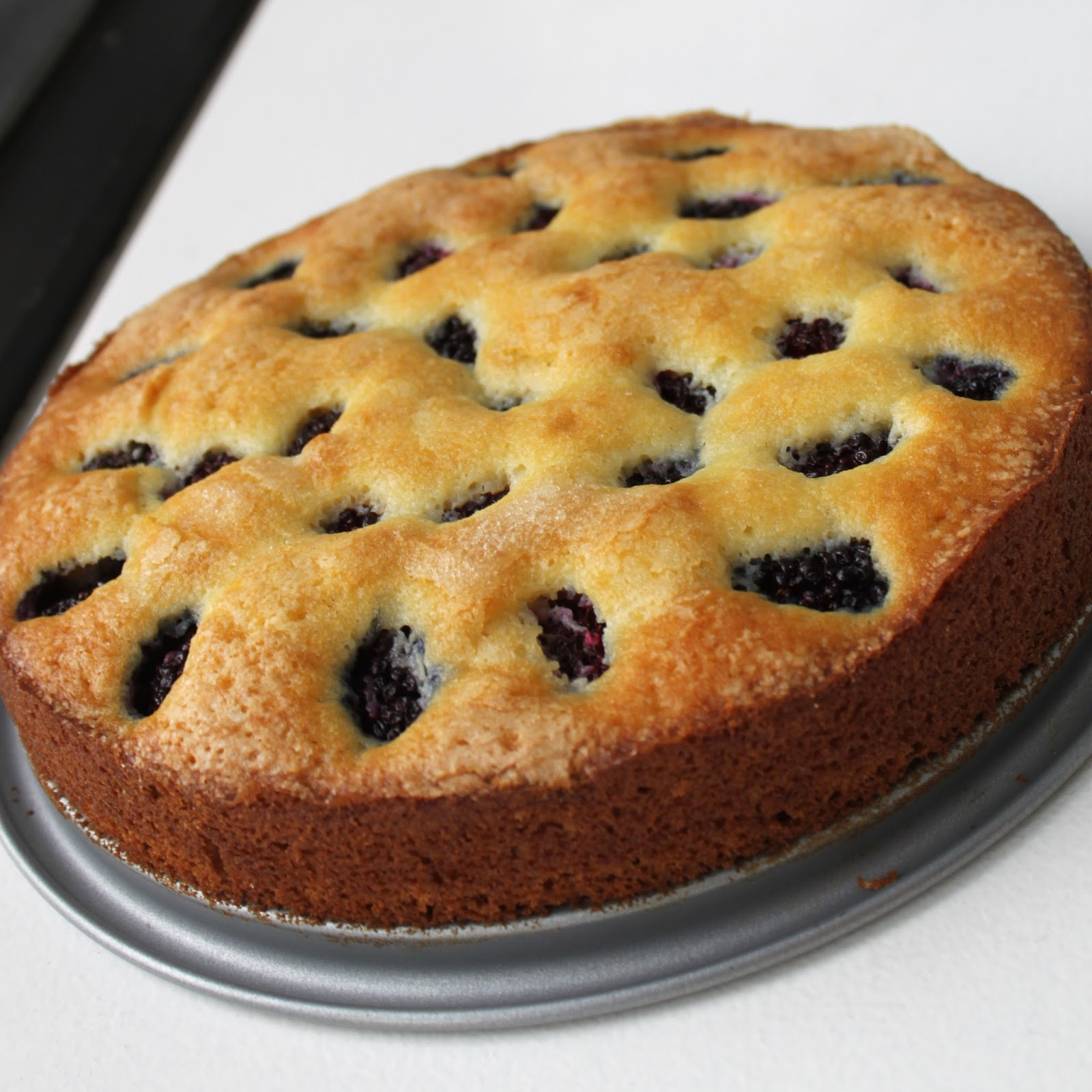 Life's Too Short to Skip Dessert: Blackberry Buttermilk Cake